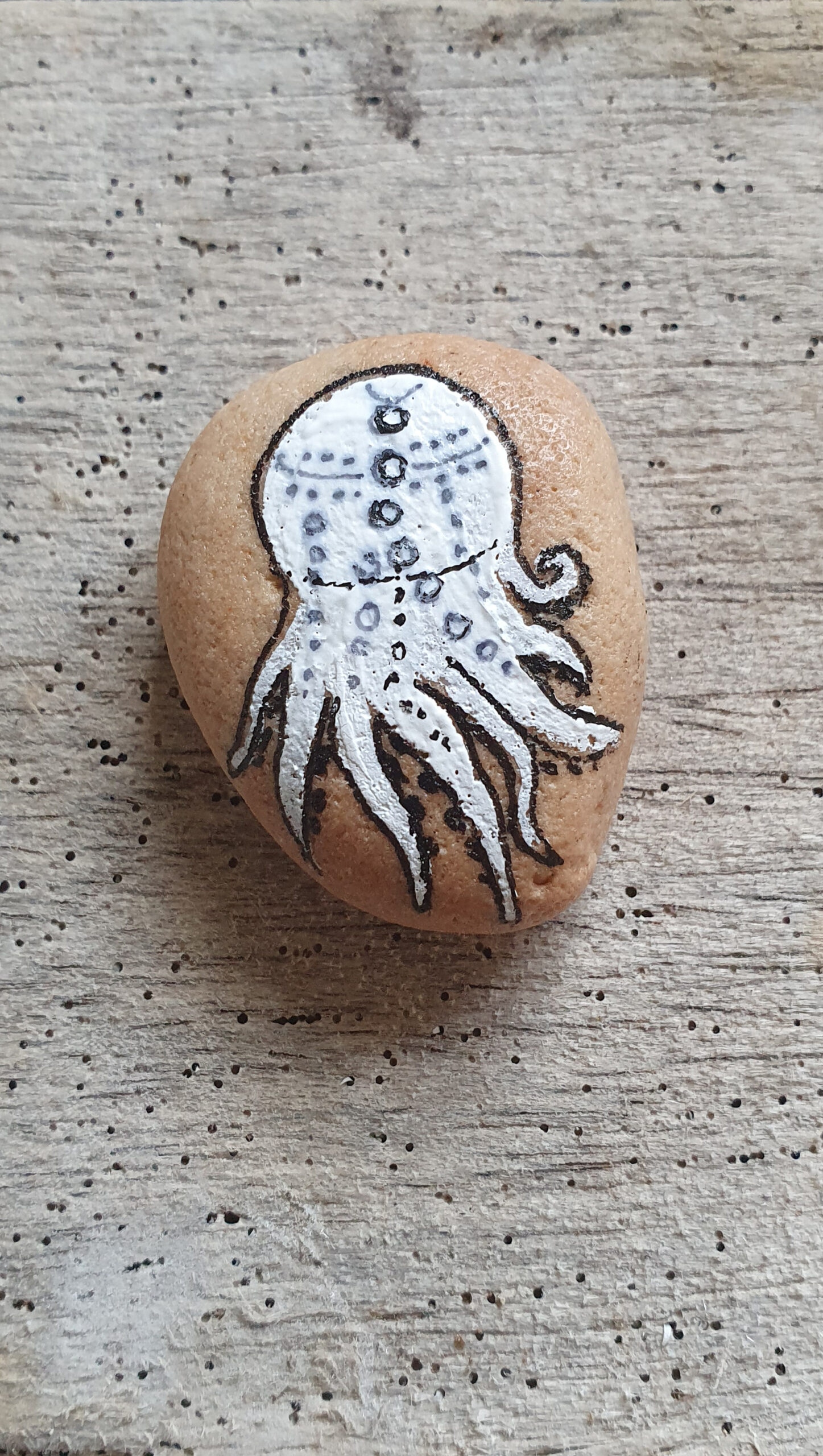 Sedimentsteinchen mit Oktopus, stone design by Calla Hueppe, Claudie Hamburg, Gezeiten-Hölzer